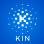 kin Foundation