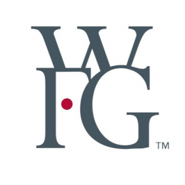 WORLD FINANCIAL GROUP (WFG)